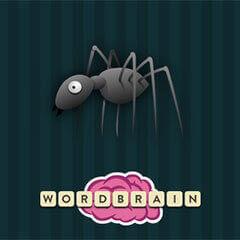 Wordbrain Edderkop